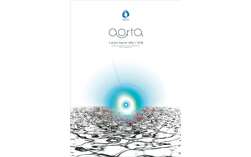 aorta_idont_poster